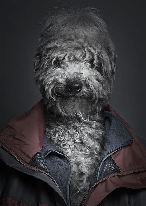 Q&A: Sebastian Magnani combines humans and canines into