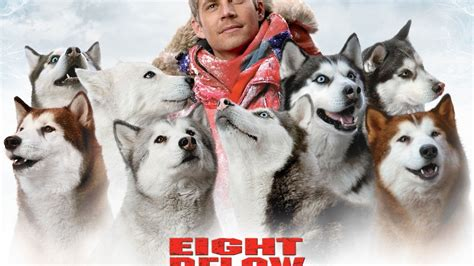 Eight Below wallpapers and images - wallpapers, pictures