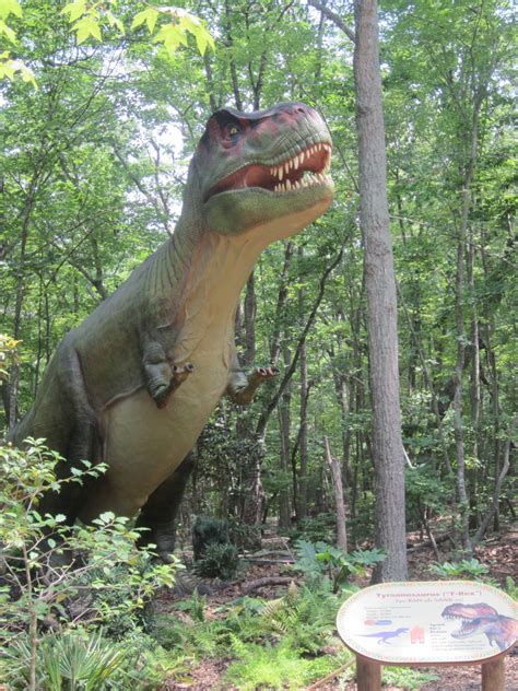 The Stir Crazy Moms' Guide to Durham: Dinosaurs at the