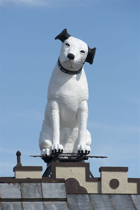 Nipper - Albany Institute of History and Art